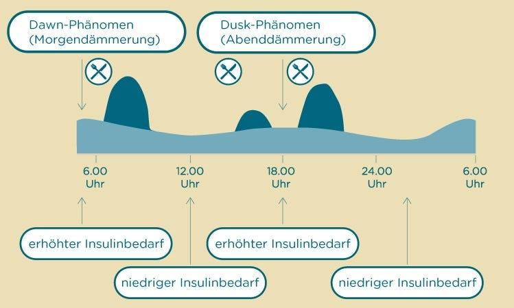 Insulinfreisetzung Nicht-Diabetiker