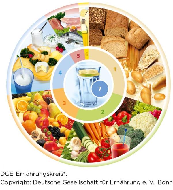 DGE-Ernährungskreis