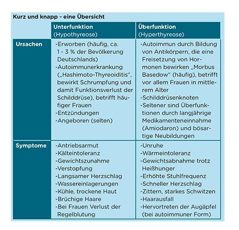 Übersicht: Symptome einer Schilddrüsen Dysfunktion