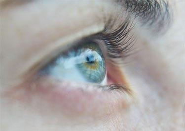 Auge Nahaufnahme
