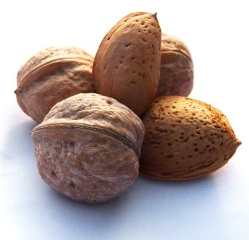 Nüsse bei Paleo Ernährung
